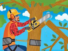 Tree Trimming Notice
